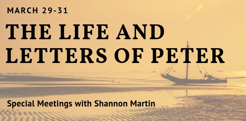 Special Meetings with Shannon Martin